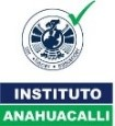 Instituto anahacalli